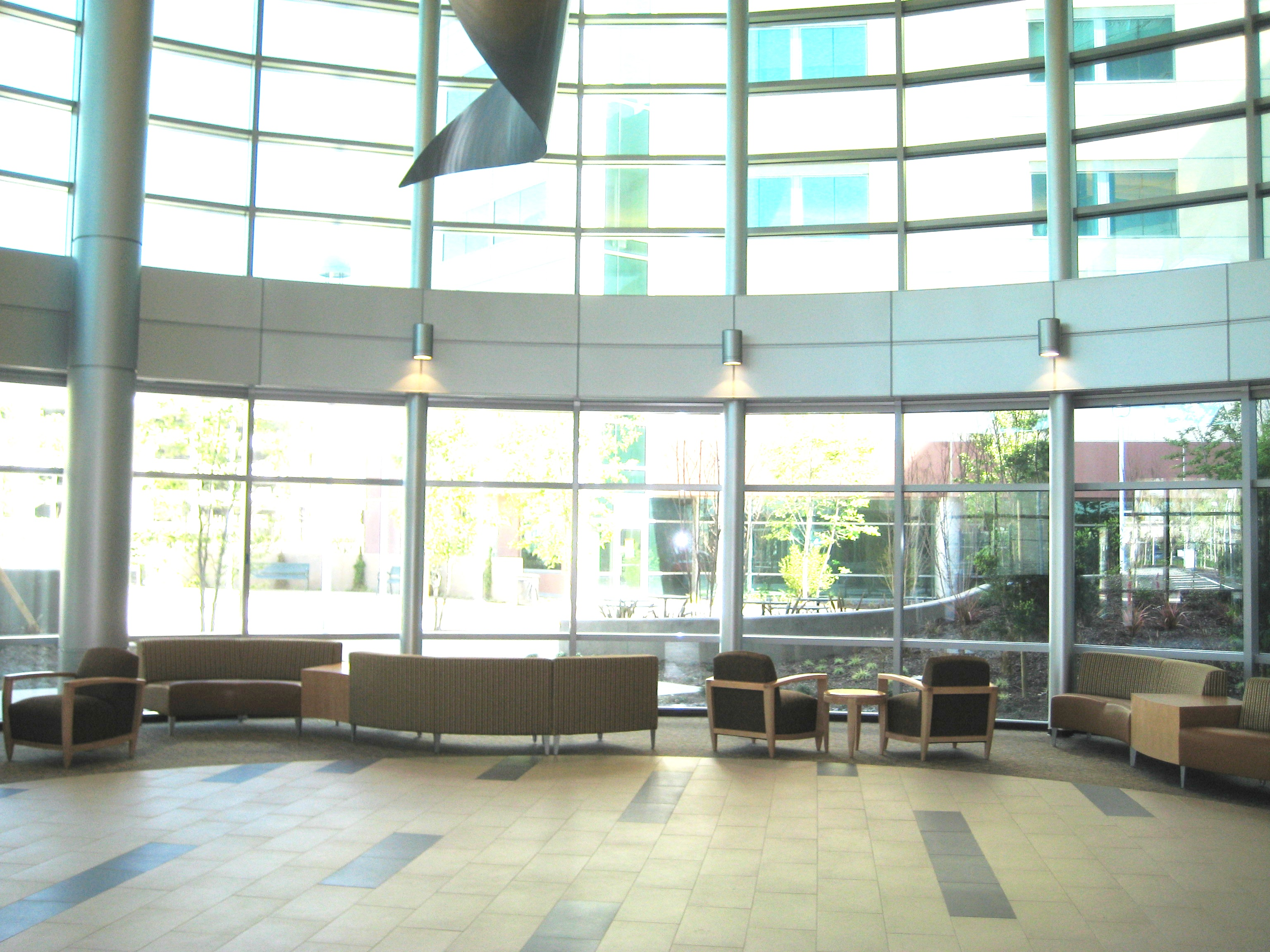 interior of modern looking hospital lobby with high feelings and glass walls