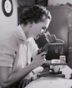 Rachel Carson at work, looking into a microscope, in 1962.