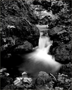 photo courtesy of Stu Levy, MD and The Permanente Journal