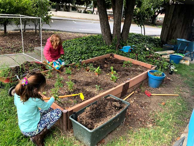 Two children gardening in planter box